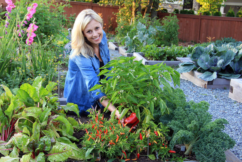 5 Companion Planting Ideas To Get Rid Of Garden Pests EBay