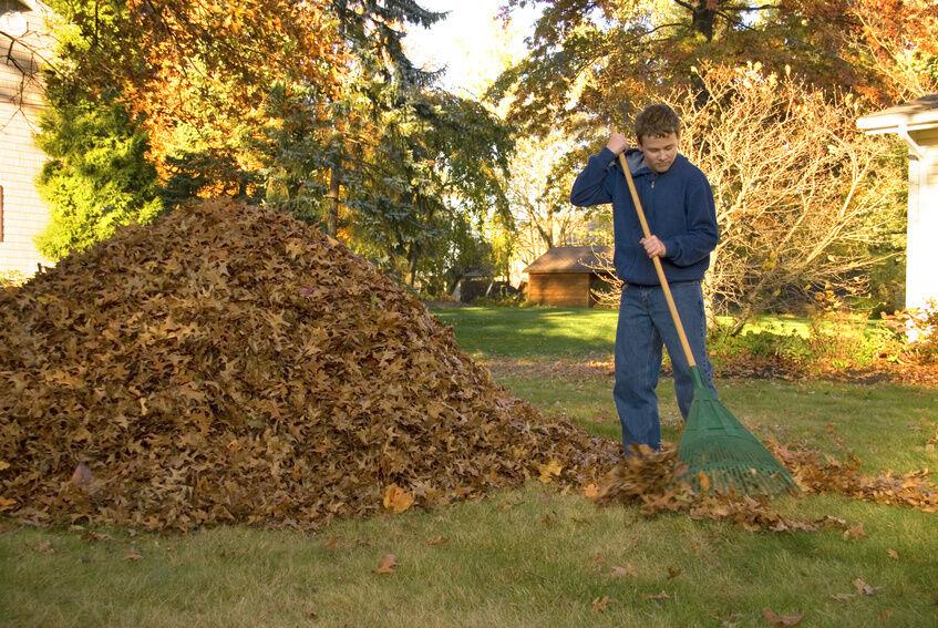 Best Garden Leaf Rake