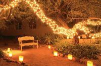 Outdoor Fairy Lighting   Lighting Ideas
