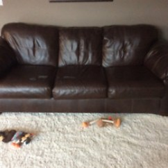 Leather Sofa Repair London Ontario Houzz Contemporary Sofas Couch Cushions Kijiji In Buy Sell Save With Canada S Free And Chair