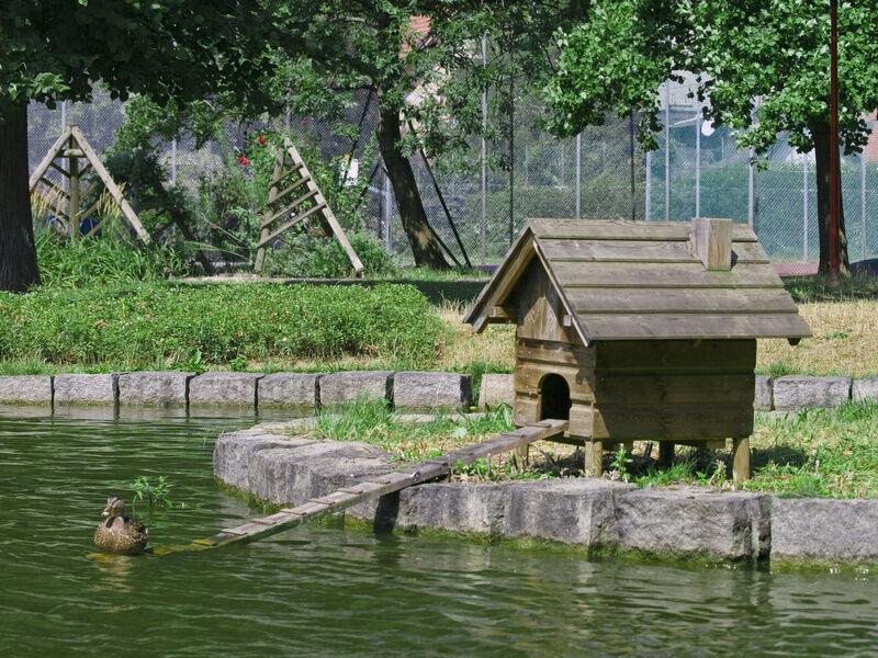 Farm Pond Accessories