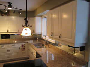 kitchen cabnet ikea rug cabinet painting painters services in ontario