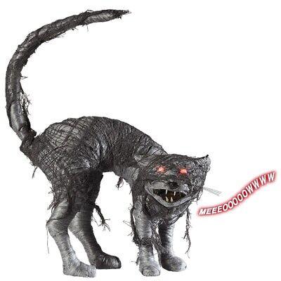 ZOMBIE KATZE mit Sound LED Augen 28 cm Halloween Deko Grusel Figur Horror #7091