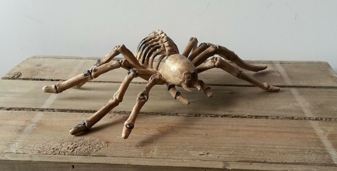 Skelett Spinne Halloween Deko 23,5 x 14 cm Halloween Spinne Horror Deko NEU