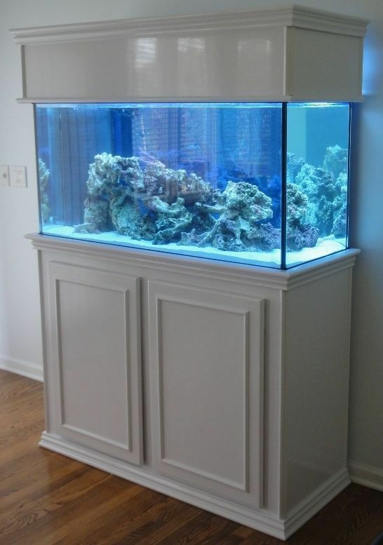 PDF Download How To Build Your Own 10 Gallon Fish Tank ... 10 Gallon Fish Tank Stand