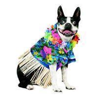 Hawaiian Dog Costume   eBay