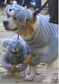 Squirrel Dog Pet Costume Halloween Hat Coat S/M/L/XL