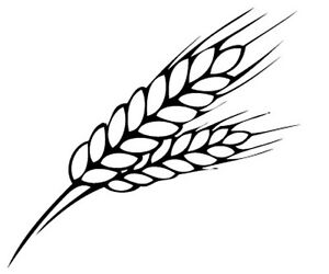 Wheat Set of Four Vinyl Decals/Stickers Walls Windows