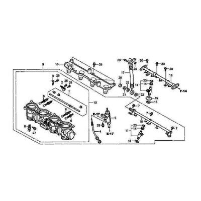 HONDA CBR 600 RR 2003-2006 injection stainless allen screw