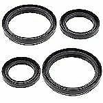 Rear Differential Seals Kit Arctic Cat 700 EFI 4x4 Auto