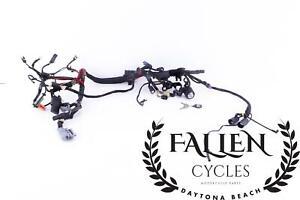 #3048 Harley Sportster Genuine OEM Main Wiring Harness