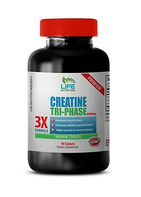 Muscle Gain Supplements Creatine Tri-Phase 5000mg Muscle ...