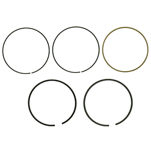 Namura Technologies Inc.Piston Ring Set~2008 Suzuki LT