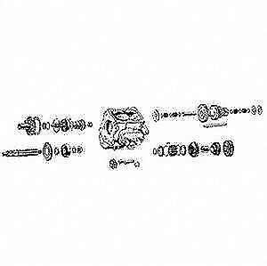 Omix-Ada 18802.01 Manual Transmission Bearing and Seal
