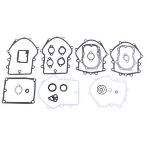 Engine Gasket Set for 495868 Replaces 491856,394501,393278