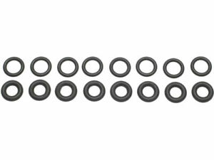 For 2002-2003 Isuzu Axiom Fuel Injector Seal Kit SMP