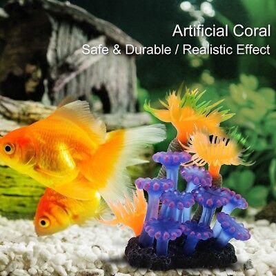 decoration for aquarium fish