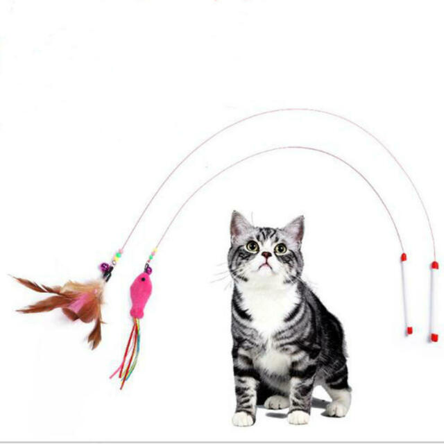 Funny Pets Cat Teaser Stick Toy Kitten Dangler Interactive