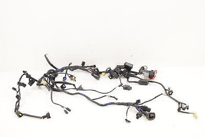 2007 Triumph Tiger 1050 Main Wiring Harness NON-ABS No