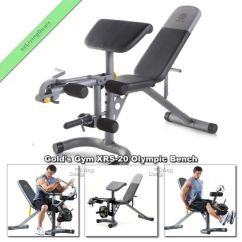 Gym Bench Press Chair Wingback Rocking Cape Town Gold Xrs 20 Olympic Weight Lifting Workout Fid Golds Benches