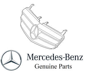 Genuine For Mercedes R-Class R320 R350 R500 R63 AMG Front