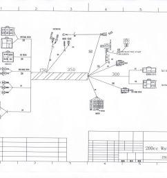 full electrics wiring harness cdi coil 200cc 250cc atv quad bike 200cc dirt bike wiring diagram [ 1600 x 1154 Pixel ]