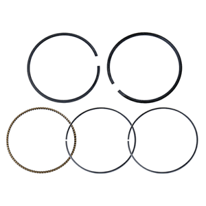 Namura Technologies Inc.Piston Ring Set~2008 Ski-Doo