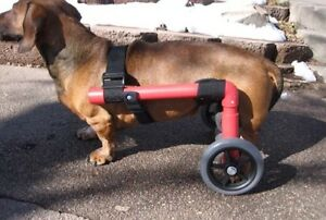 wheelchair dog rocking chair height custom dogs under 30lbs comes ready to go ebay image is loading