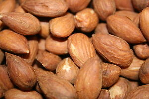 ALMONDS ROASTED UNSALTED 2 LBS premium quality  A