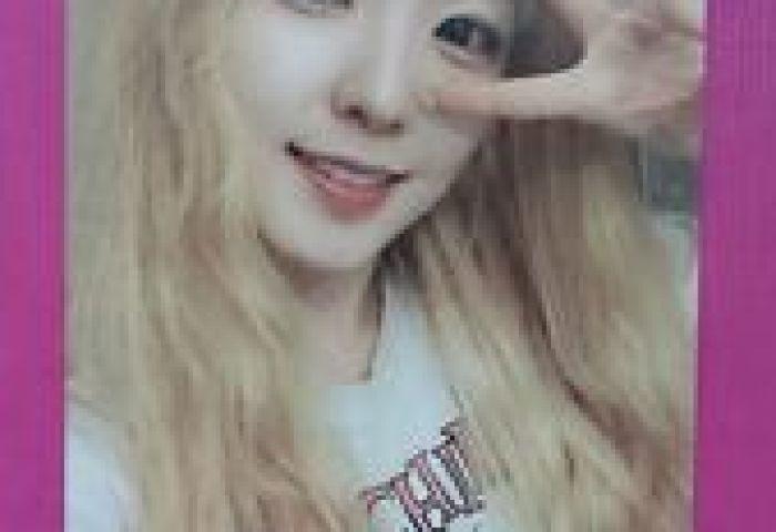 Red Velvet Irene Official Photocard Ice Cream Cake 1st Mini Album