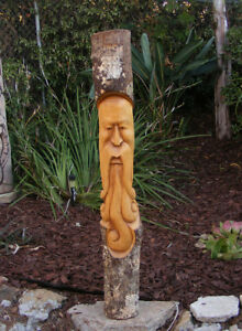 Wood Wizard Carving