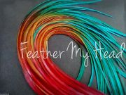 feather hair extensions multi color