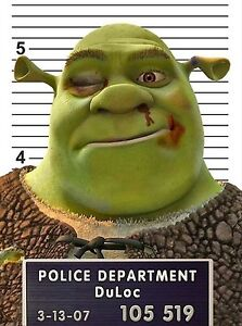Shrek Pictures Funny : shrek, pictures, funny, T-Shirt,, Shrek, Funny, Ideal, Birthday, Present