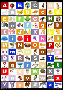 ABC Alphabet Chart : The Alphabet Poster for Learning Capital and ...