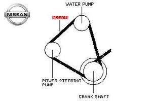 Genuine Nissan Almera Tino Power Steering and Water Pump