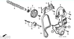 2001-2005 OEM HONDA CIVIC DX EX HX LX 1.7L SOHC TIMING