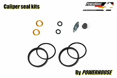 Aprilia RSV 1000 R Mille rear brake caliper seal repair