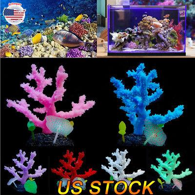 us aquarium fish tank