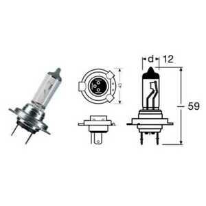 404204020#156 Lamp H7 Night Racer 50 55W / Px26D Triumph