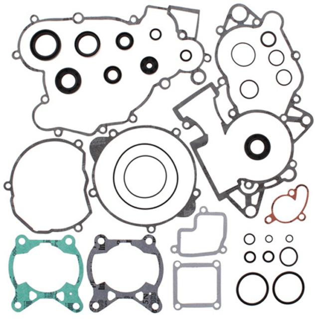 Complete Gasket Set With Oil Seals~2009 KTM 85 SX (19/16