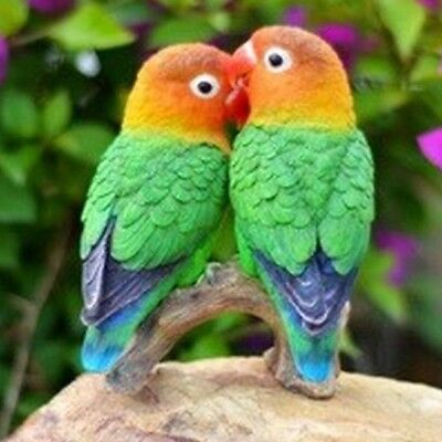 parrots on branch love