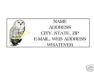 details about snowy owl