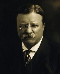 Teddy Roosevelt Portrait : teddy, roosevelt, portrait, PRESIDENT, THEODORE, ROOSEVELT, PORTRAIT, 11x14, SILVER, HALIDE, PHOTO, PRINT