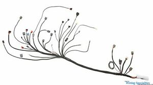 Wiring Specialties Pro Engine Tranny Harness for CA18