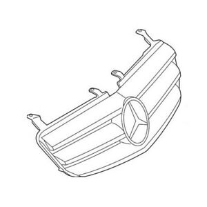 Genuine Front Grille Assembly for Mercedes R-Class R320