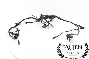 04 Harley Roadster XL 1200 Wiring Wire Harness Loom MAIN w