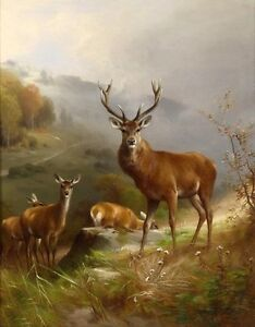 Famous Deer Paintings : famous, paintings, Painting, Beautiful, Animals, Summer, Painted, Canvas