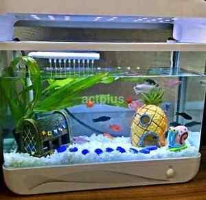 pineapple house aquarium fish