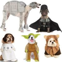 Pet Dog Cat Yoda Costume Rubies Fancy Dress Star Wars ...
