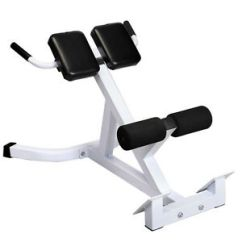 Gym Quality Roman Chair Side Chairs With Casters Goplus Extension Hyperextension Back Exercise Ab Bench Abdominal | Ebay